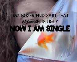 boy gets dumped for calling a fish ugly