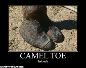 a real camel's toe