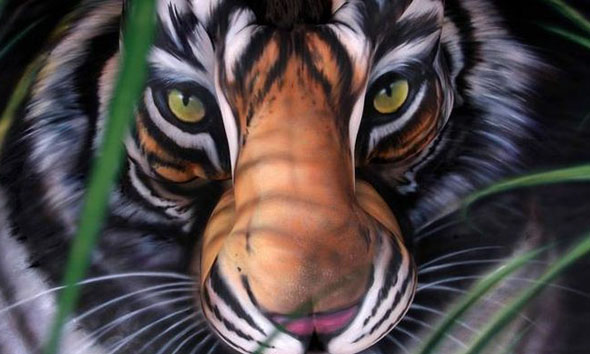 really cool optical illusion - Crouching Tiger Hidden Girl